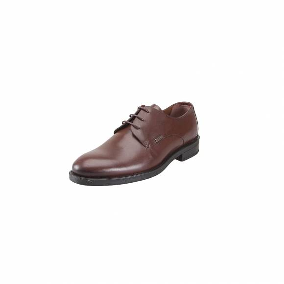 GK Uomo X3522 10034 D Brown